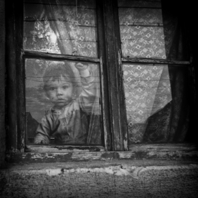 Zoran Toldi - Window